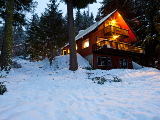 A Night in the Woods: 6 Things to Consider When Booking Cabin Rentals 16