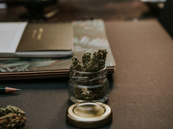 6 Best Marijuana Strains for Sparking Creativity 2