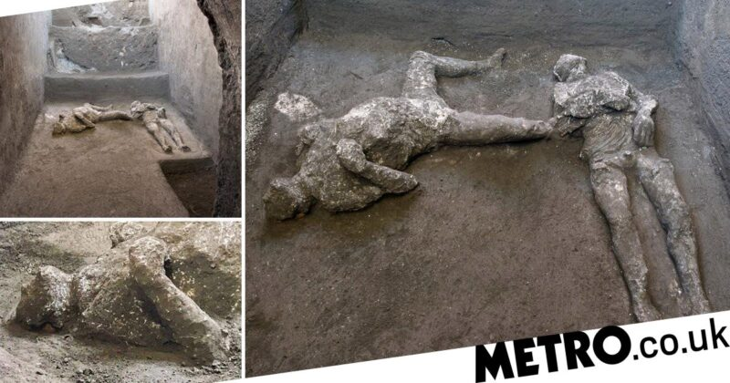 Pompeii: Dig unearths bodies of master and slave