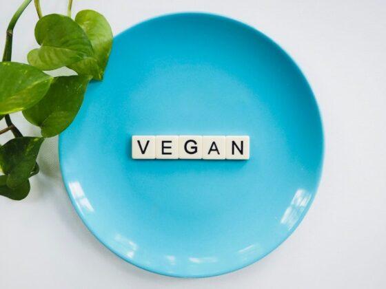 3 Ways to Smoothly Start a Vegan Lifestyle 9