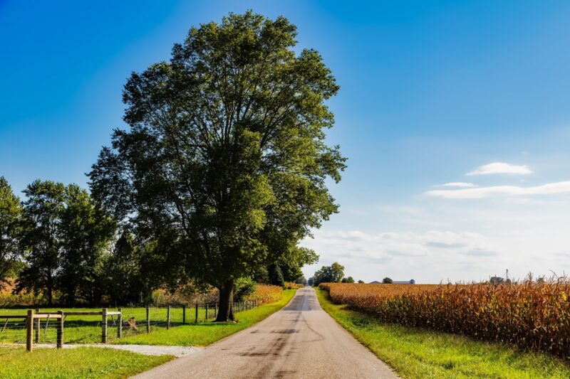 Top 7 Best Places to Visit in Indiana 1