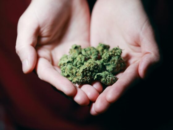 Marijuana for Insomnia, Pain, & More: What Conditions Can Marijuana Help With? 2