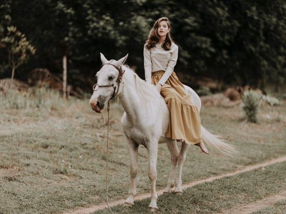 feminine young woman sitting on purebred horse on grassy rural road