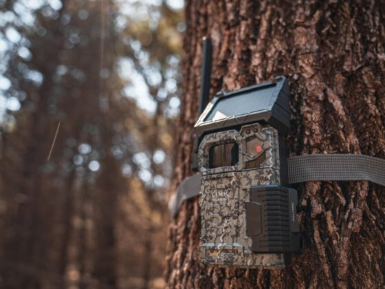 How to Choose the Perfect Trail Cameras 2