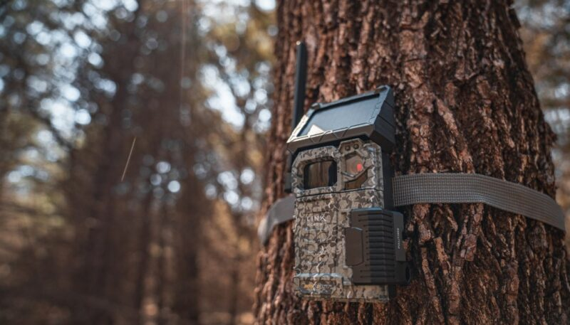 How to Choose the Perfect Trail Cameras 1